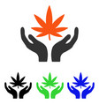 Cannabis care flat icon vector image