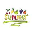 Summer fruits fruit vector image