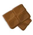 chocolate pieces cartoon vector image