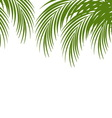Palm leaf silhouettes background Tropical leaves vector image