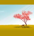 sakura tree wallpaper with sky vector image