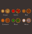 a variety of spices and vector image