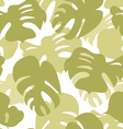 Monstera leaves pattern vector image