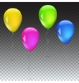 Set of balloons various colors vector image