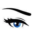 isolated blue eye vector image vector image