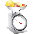 Fruit on weighing scales vector image vector image