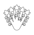 whole celery icon vector image