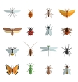 Insect Icon Flat vector image
