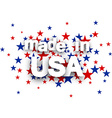 Made in USA sign vector image