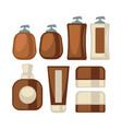 brown-beige stylish bathroom beauty cosmetics vector image