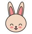 cute rabbit animal tender isolated icon vector image