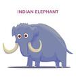 Cartoon Indian Elephant isolated on white vector image