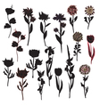 plant silhouettes vector image vector image