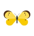 Flat butterfly isolated on white background vector image