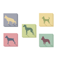 Icon of dogs vector image