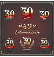 Thirty years anniversary signs collection vector image