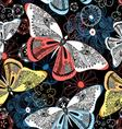 Lovely graphic pattern fancy butterflies vector image