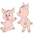 piglets vector image