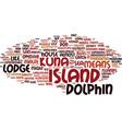 The dolphin lodge san blas islands panama text vector image