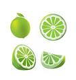 lemon green fruit isolated set vector image