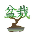 japanese bonsai tree in the form of hieroglyphs on vector image vector image