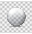 realistic transparent ball plaid background vector image