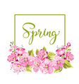 spring flower card vector image vector image