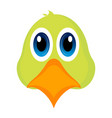 avatar of a parrot vector image