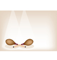 Two Beautiful Maracas on Brown Stage Background vector image vector image