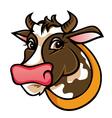 brown farm cow vector image