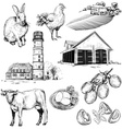 Hand Drawn Set of Farm and Agriculture Icons vector image