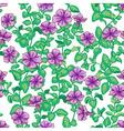 petunia pattern vector image