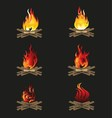 Firewood and Flame Bonfire vector image