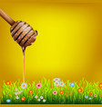 Honey dipper vector image