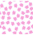 sakura pattern on white background vector image