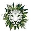 Graphical leopard with palm leaves vector image