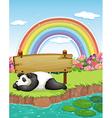 Panda and rainbow vector image