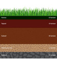 seamless soil layers vector image