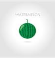 Green watermelon vector image