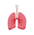 silhouette respiratory system with lungs vector image