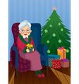 christmas gift for grandma vector image