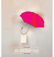 Sale poster with classic elegant opened red vector image