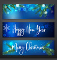 ny landscape banners vector image