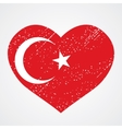 emblem of turkey vector image vector image