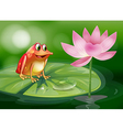 A frog above the waterlily beside a pink flower vector image