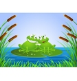 frog couple vector image vector image