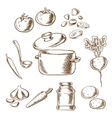 Cooking vegetarian soup with ingredients vector image