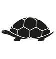 black turtle icon vector image