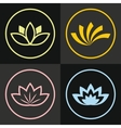 Color line flowers on black background vector image