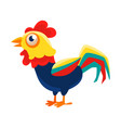 rooster cartoon character standing calmcock vector image